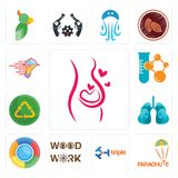 Set of pregnancy, parachute, triple, woodwork, , lungs, recycle reuse uce, chemical company, catering services icons. Set Of 13 simple  icons such as pregnancy Stock Photography