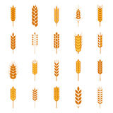 Set of simple wheat ears icons Royalty Free Stock Photo