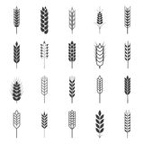 Set of simple wheat ears icons Royalty Free Stock Photos