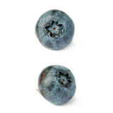 Set of Single berry of Bilberry or blueberry over isolated white background Stock Image