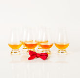 Set of single malt tasting glasses, single malt whisky in a glasses, white background. Exclusive set stock photos