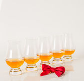 Set of single malt tasting glasses, single malt whisky in a glas Stock Photography