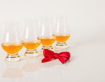 Set of single malt tasting glasses, single malt whisky in a glasses, white background, red bow. Exclusive set royalty free stock photos
