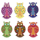Set of six colourful funny owls over white Stock Images