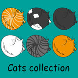 Set of six funny cats, isolated on turquoise Royalty Free Stock Photo