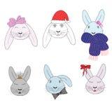 Set of six rabbits. Head closeup. Stock Photography