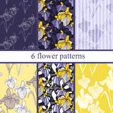 Set of six  seamless flower pattern with irises . Royalty Free Stock Photos