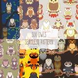 Set of six seamless patterns with birds. Cute owl seamless pattern. Cartoon style bird Stock Photo