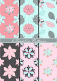 Set of six seamless patterns with flowers in pink, blue and gray colors. Vector background Stock Image