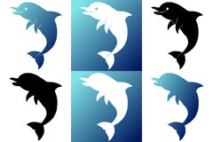 Set six silhouette dolphin on white and blue. Set six silhouette dolphin white, black and blue on white and blue background Royalty Free Stock Photo