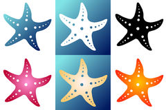 Set six silhouette starfish. Set six multi-colored silhouette starfish on a white and blue background. Blue, white, black, red, beige and orange silhouette Royalty Free Stock Photos