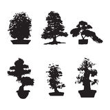 Set of six silhouettes bonsai Stock Photos