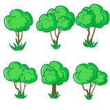 Set of six young smooth trees with grass Royalty Free Stock Images