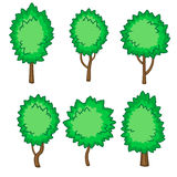 Set of six young trees Royalty Free Stock Photo