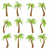 Set of sixteen different cartoon palm trees  on white background Stock Images
