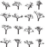 Set of sixteen silhouettes of trees Royalty Free Stock Images