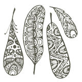 Set of sketch  feathers Royalty Free Stock Images