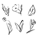 Set of sketch flowers leaves and plants Stock Photos
