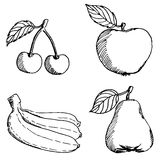 Set of sketch fruits Royalty Free Stock Photo