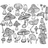 Set of Sketch of mushrooms Stock Image