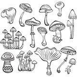 Set of Sketch of mushrooms Stock Photography