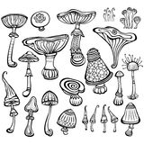 Set of Sketch of mushrooms Stock Images
