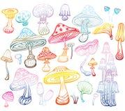 Set of Sketch of mushrooms Stock Photos