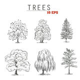 Set sketch trees. Collection trees Stock Photos