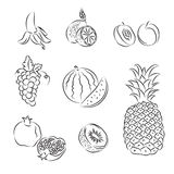Set of  sketches Royalty Free Stock Images