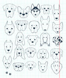 Set of sketches 24 dogs different breeds handmade. Head dog. Set sketches of 24 dogs different breeds handmade. Head of dog. Icons with dogs. Sketch animals Royalty Free Stock Photos