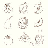Set Sketches of fruit Royalty Free Stock Photography
