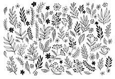 Set of sketches and line doodles hand drawn. Design floral elements. Vector illustration EPS10 royalty free illustration