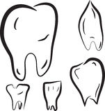 Set of sketches teeth Royalty Free Stock Photography
