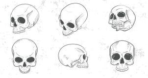Set of skull heads Stock Photo