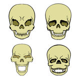 Set of skulls Stock Photography