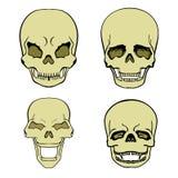 Set of skulls. Set of aggressive skulls, bone stock illustration