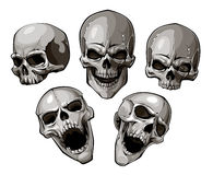 Set of skulls Royalty Free Stock Image