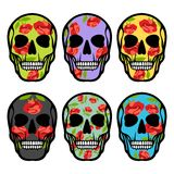 Set of skulls with flowers Stock Images
