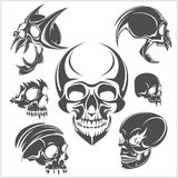 Set of skulls. Vector illustration Royalty Free Stock Photo