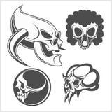 Set of skulls. Vector illustration. Royalty Free Stock Image