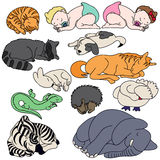 Set of sleeping animals and baby Royalty Free Stock Photo