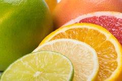 Set of sliced citrus fruits lie together as a background stock photos
