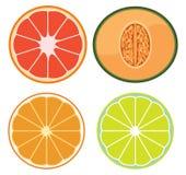 A Set of Sliced Fruits. Illustration royalty free illustration