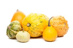 Set of small pumpkins isolated on white background Royalty Free Stock Photos