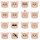 A set of smiles of cat muzzles. Royalty Free Stock Photos