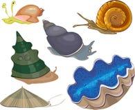 Set of snails Stock Image