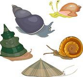 Set of snails Royalty Free Stock Photography