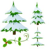 Set of snow covered fir christmas trees. Set of snow covered fir trees and holly christmas decorated branch. Vector illustration Royalty Free Stock Photos