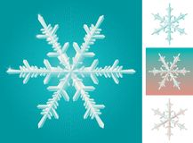 Set of snowflake Royalty Free Stock Photos