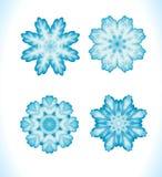 Set of snowflakes fractals or mandalas Stock Photos